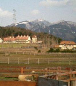 雪山とブルーメの丘 (byシュウ)